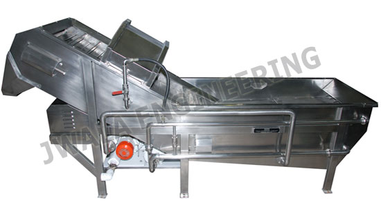 Fruit Washer Machine India